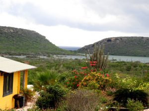 Amazing View Bungalows  general view