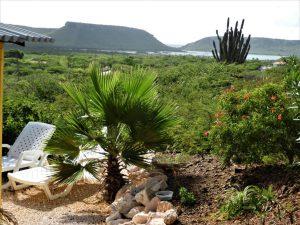 amazing view bungalows 12 klein