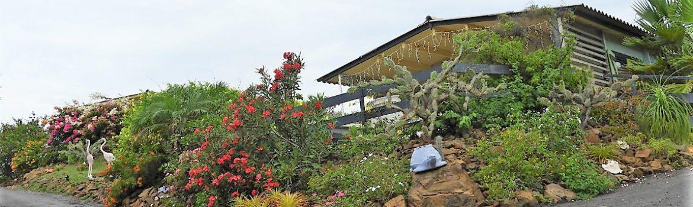 amazing view bungalows algemeen
